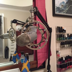 Blue Yeti mic on arm and vibration isolation mount